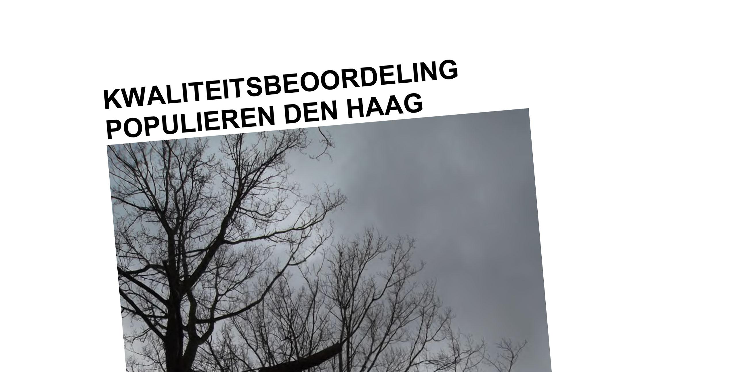 Den-Haag-populieren-beoordeling