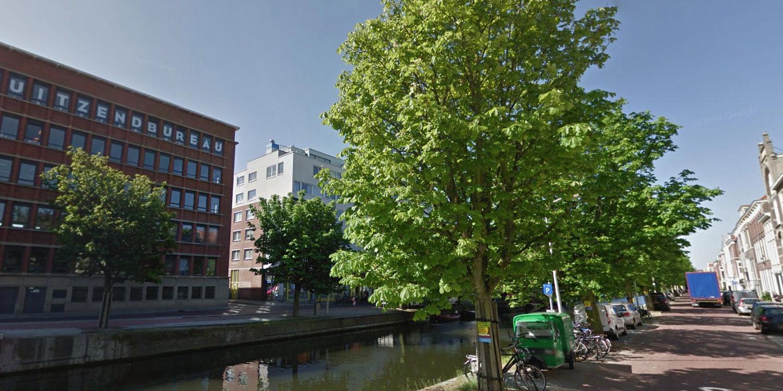 Bomen Veenkade Den Haag mogen voorlopig niet worden gekapt, zegt de rechter