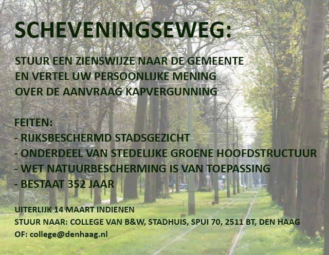 Scheveningseweg: oneens met de bomenkap? Laat het de gemeente weten!