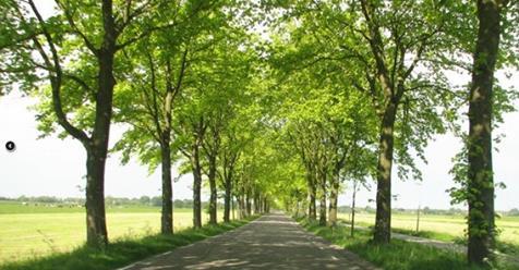 provinciale-wegen