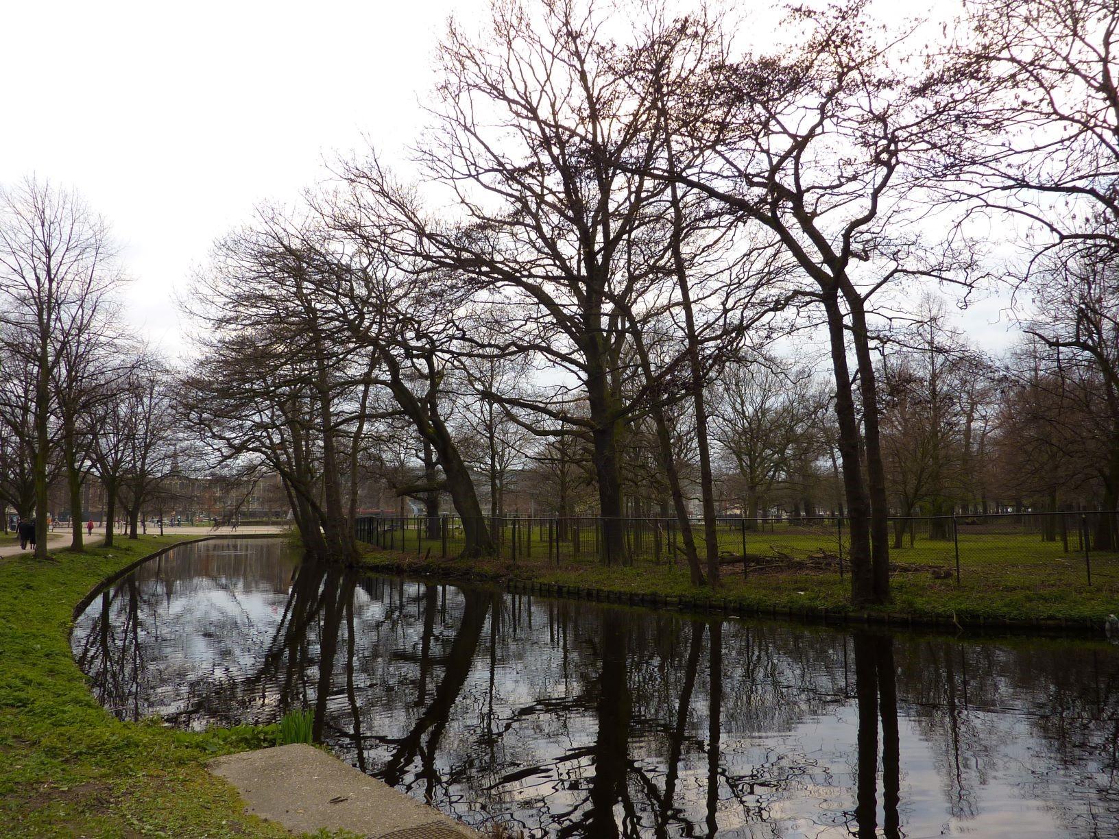 Koekamp – bomen blijven voorlopig staan!